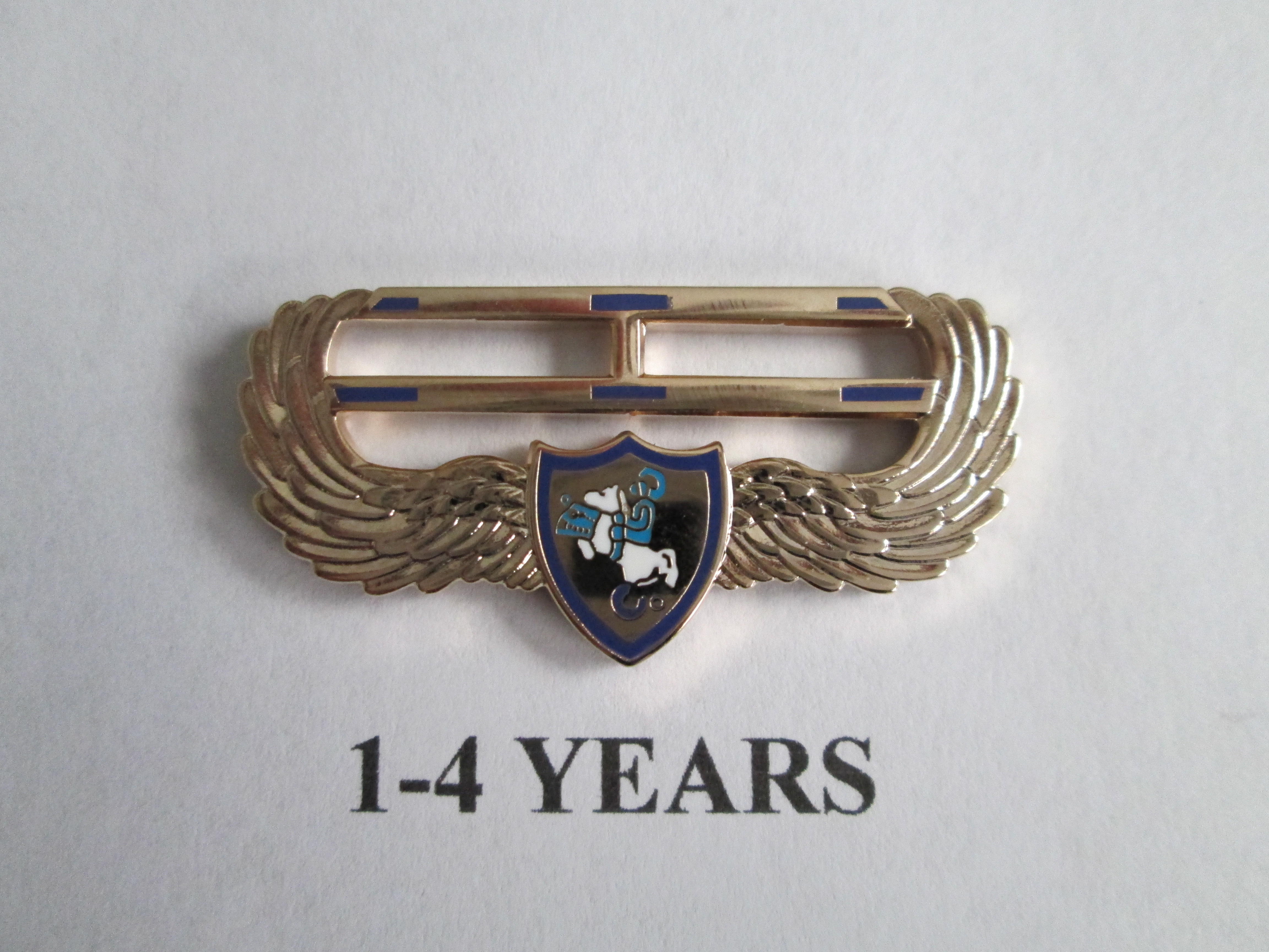 chapter_pins__1__4_years_of_service