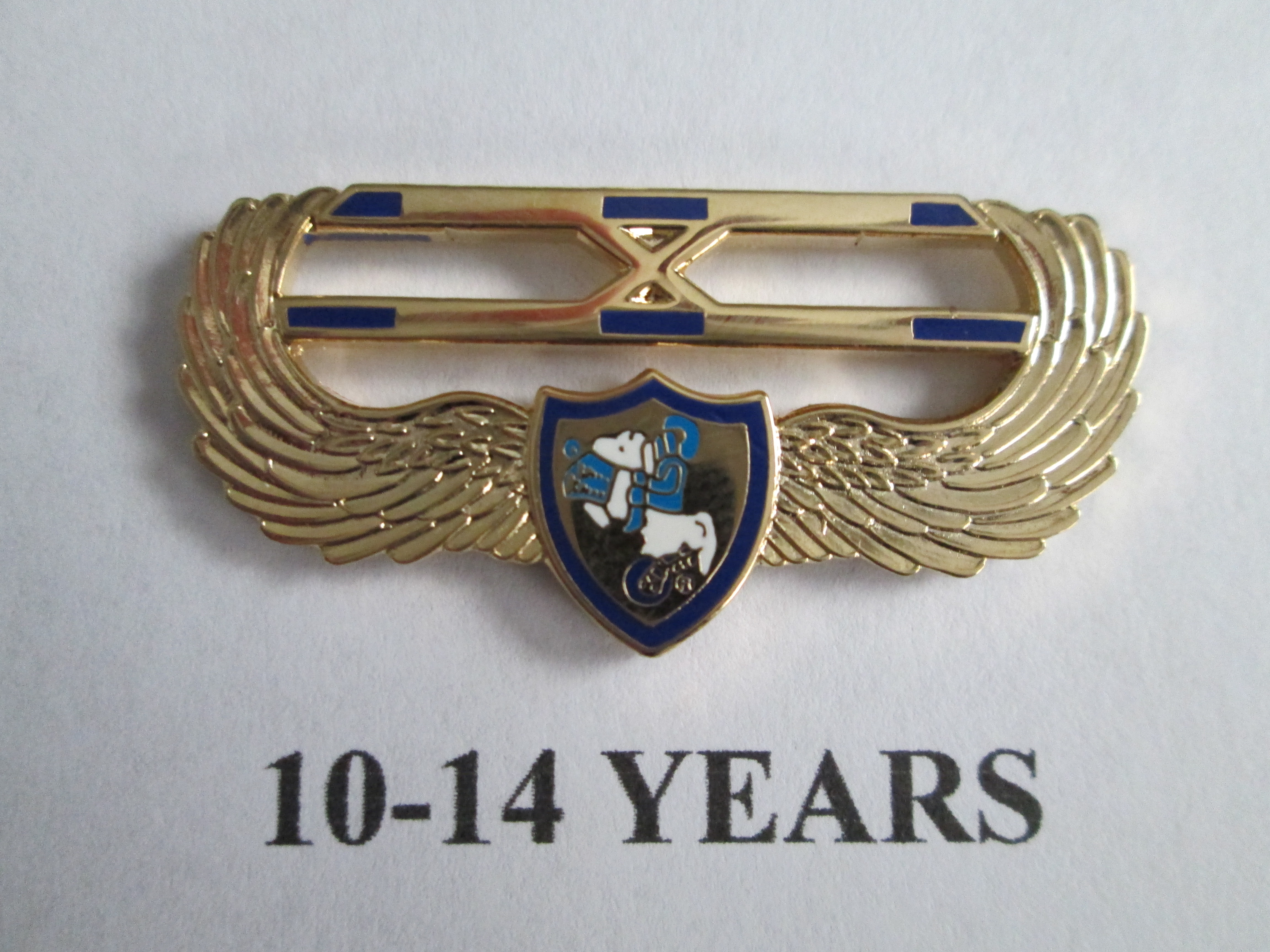 chapter_pins__10___14_years_of_service