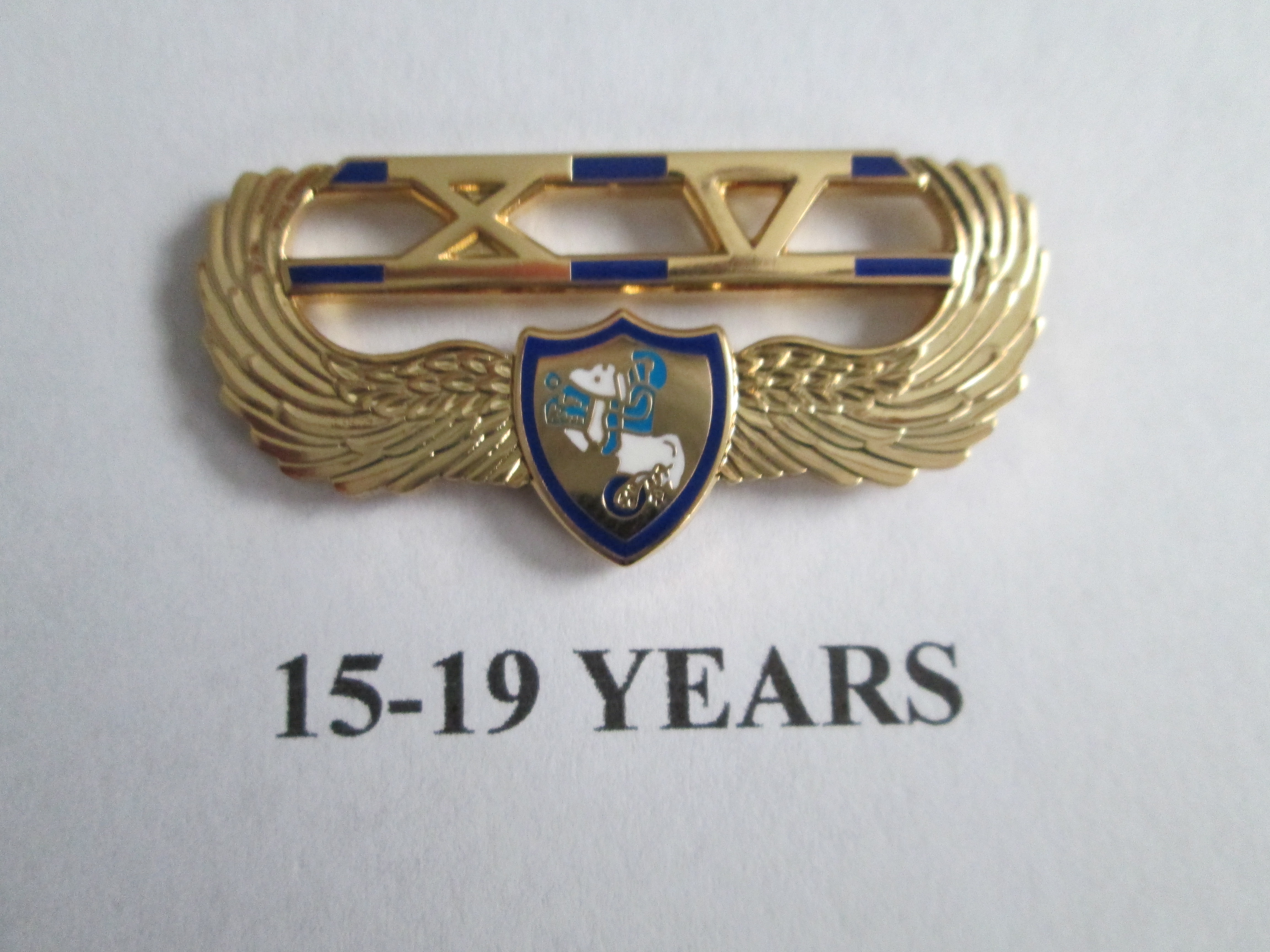 chapter_pins__15___19_years_of_service