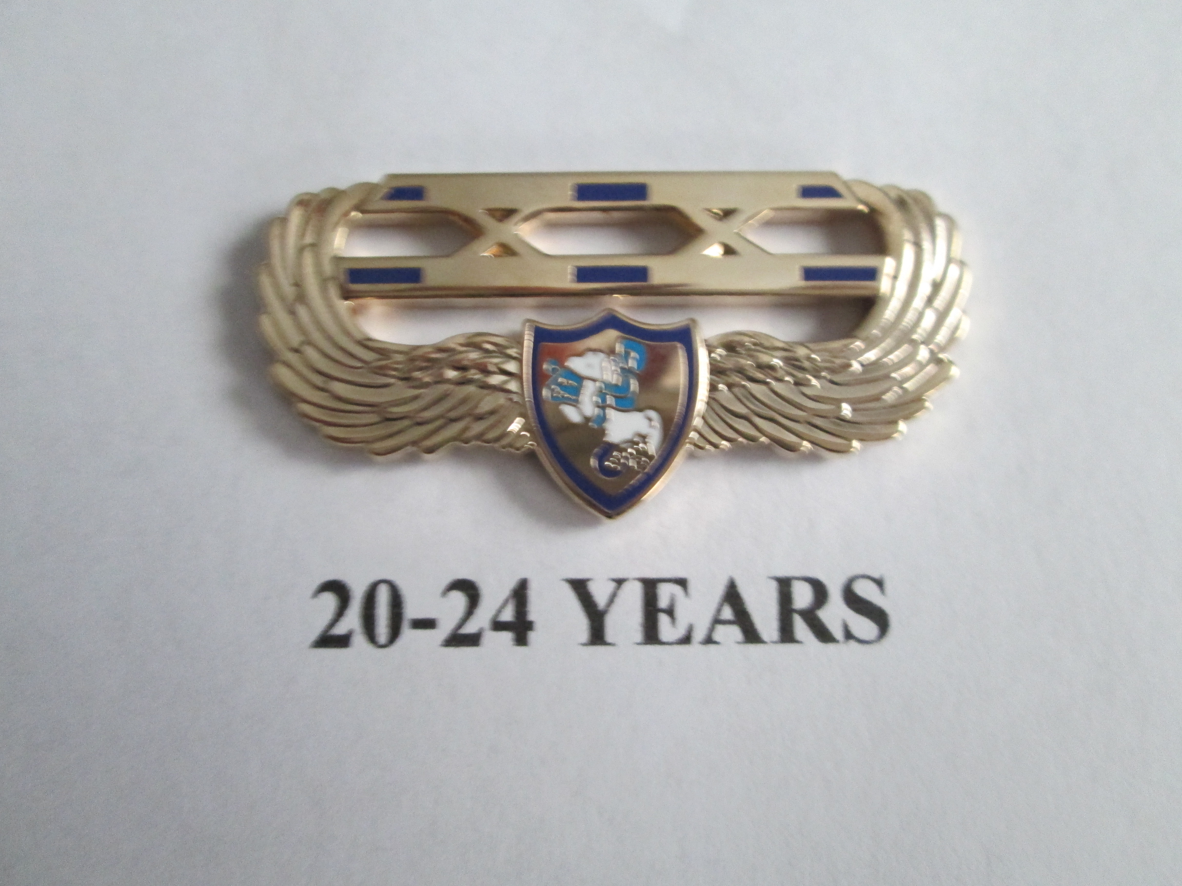 chapter_pins__20___24_years_of_service
