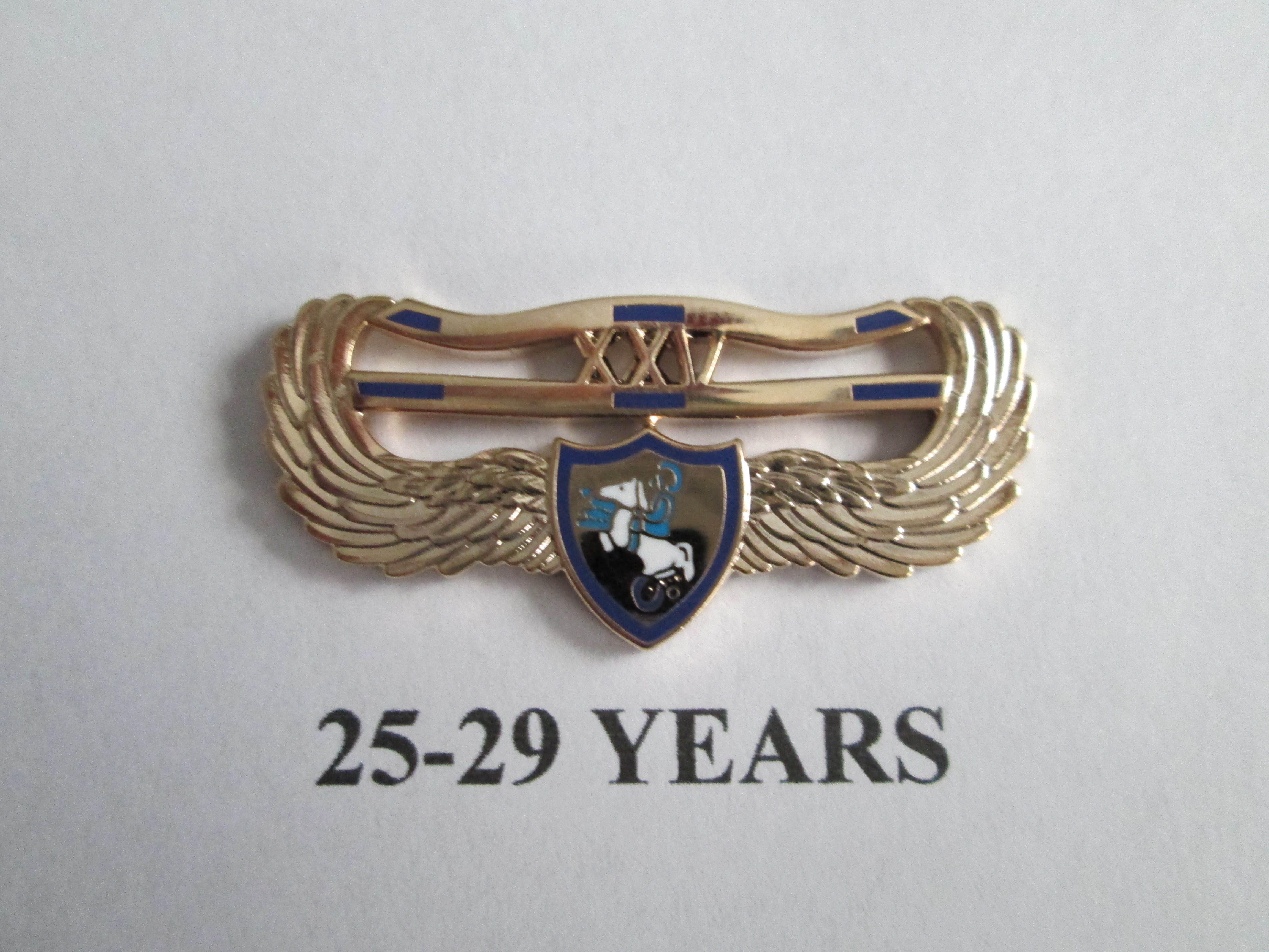 chapter_pins__25___29_years_of_service