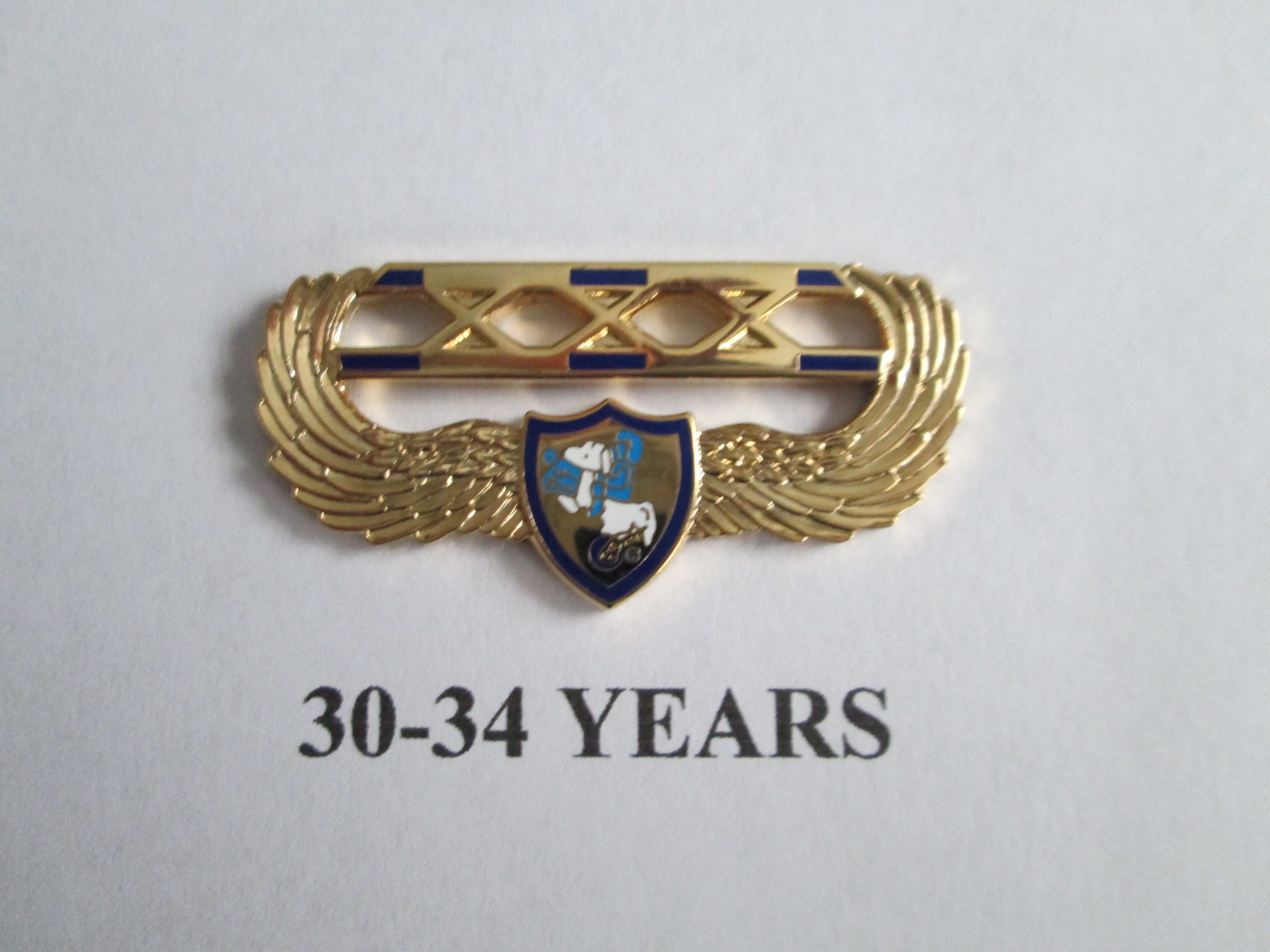 chapter_pins__30___34_years_of_service