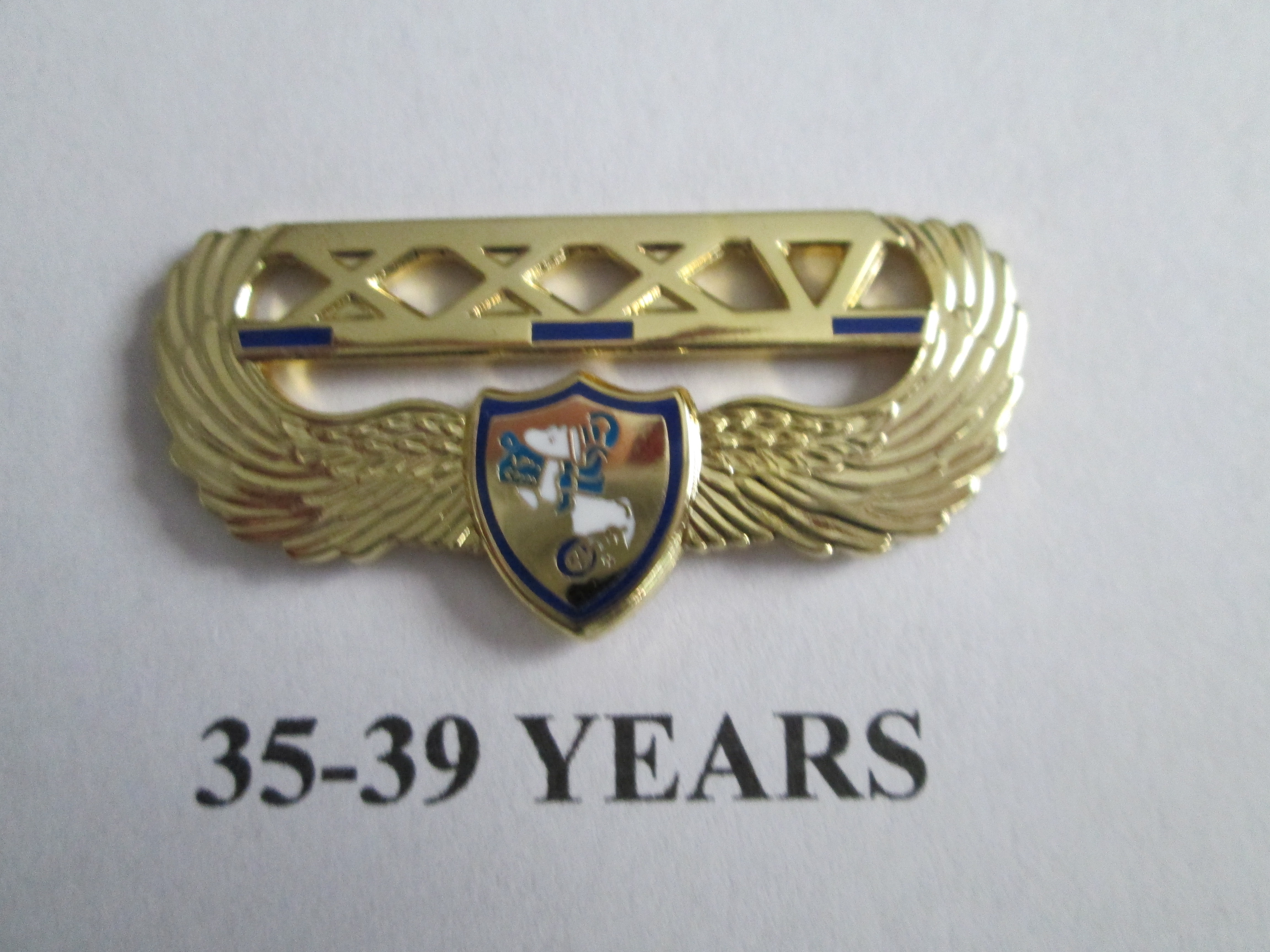 chapter_pins__35___39_years_of_service