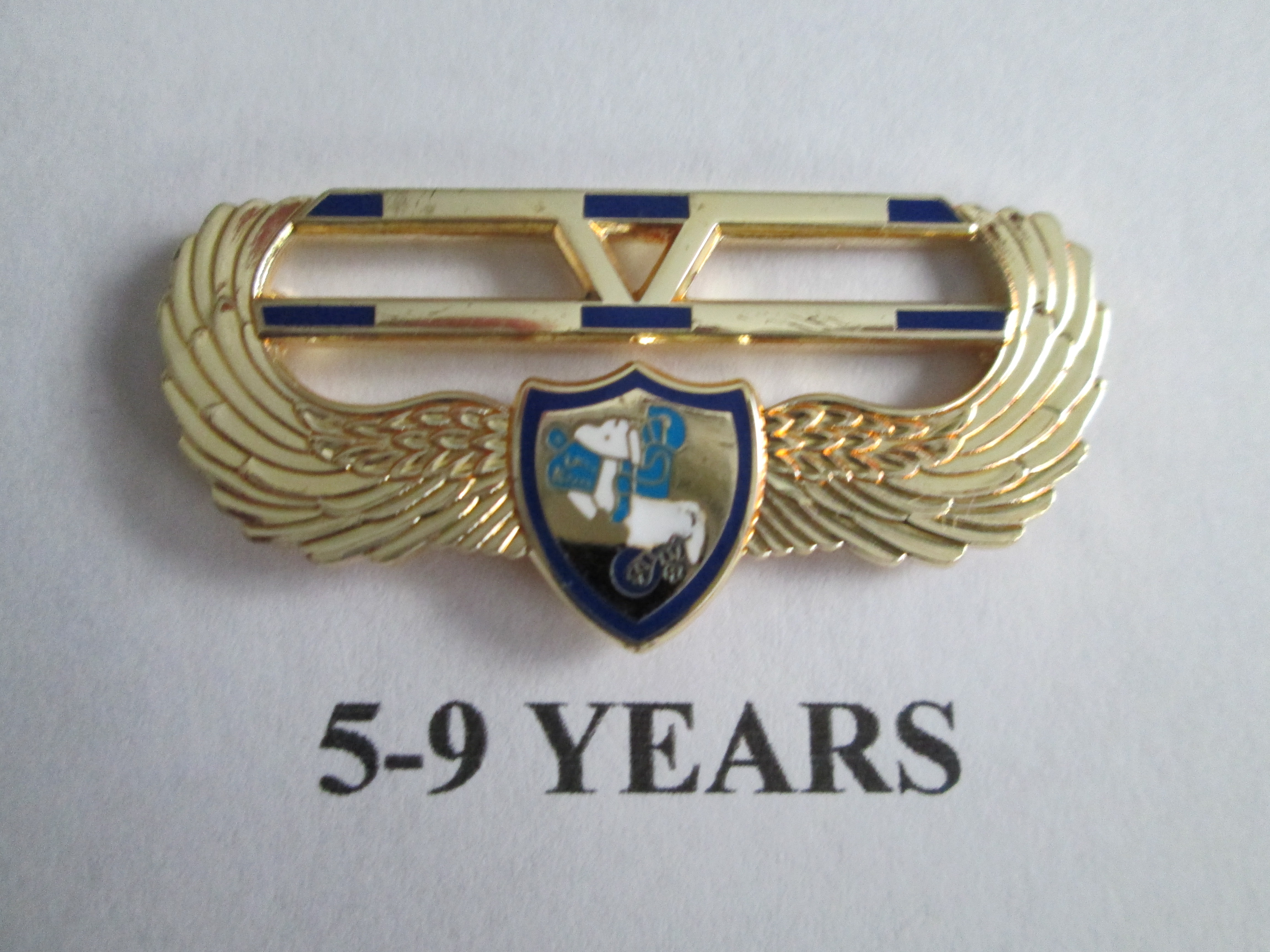 chapter_pins__5___9_years_of_service